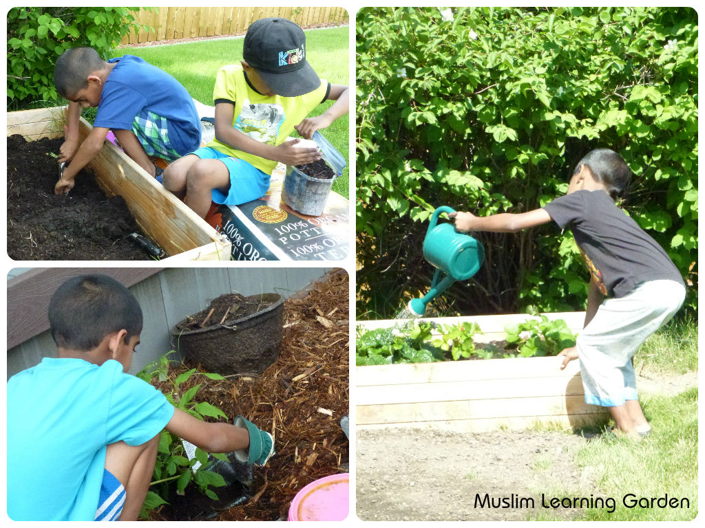 garden muslim How to create a garden with persian, arabic or islamic influences islamic inspired garden designs are an art form in their own right they tend to follow very neat rules and concepts and.